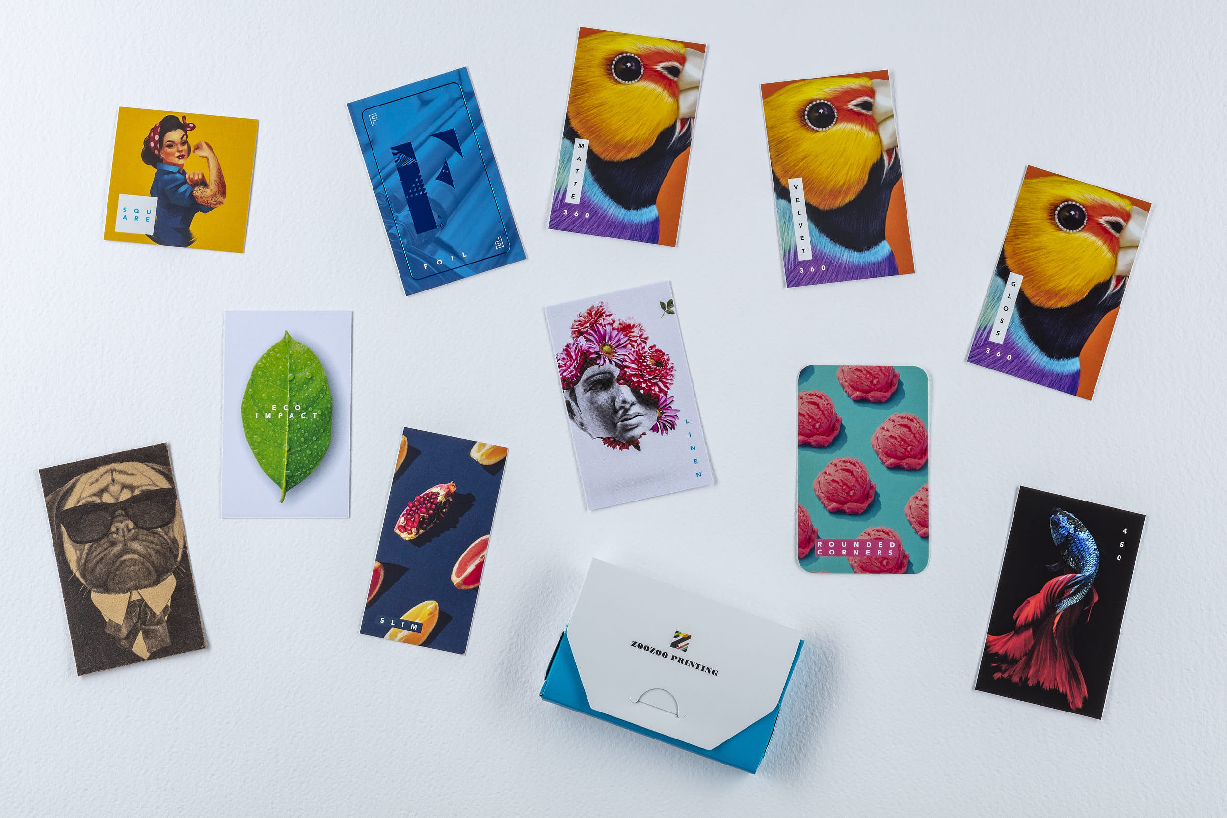 ZooZoo Printing 360 cards_Commercial Advertising Product Photography